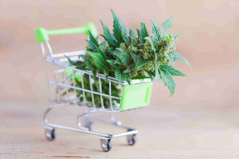 Cómo abrir una tienda de marihuana y accesorios para fumadores